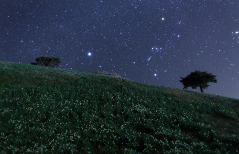 Самая яркая звезда в Северном полушарии