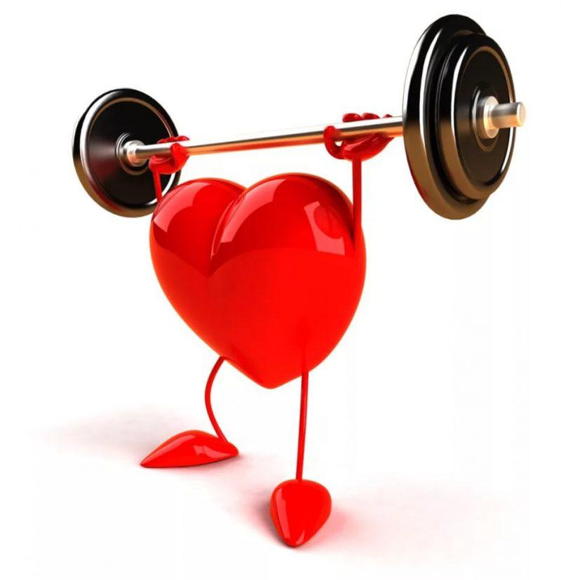 сердце нагрузка