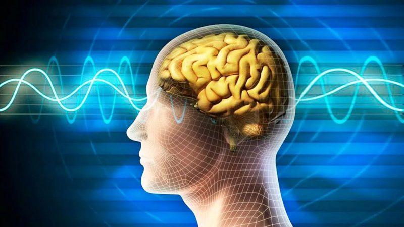 Чем занимается психофизиология?