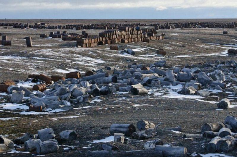 Экология Северного Ледовитого океана
