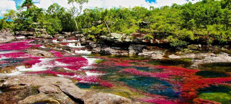 Кристальная река в Колумбии