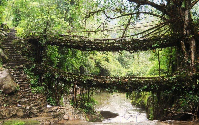 Черрапунджи мост