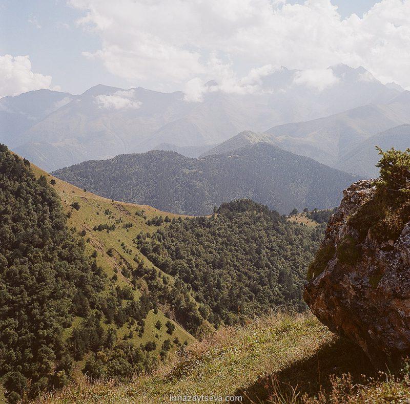Растительность Ингушетии