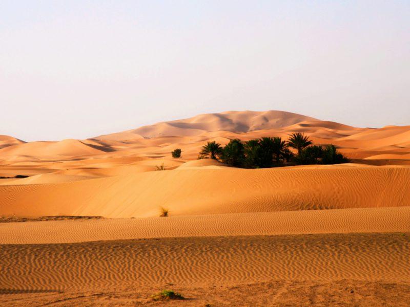 самая маленькая пустыня