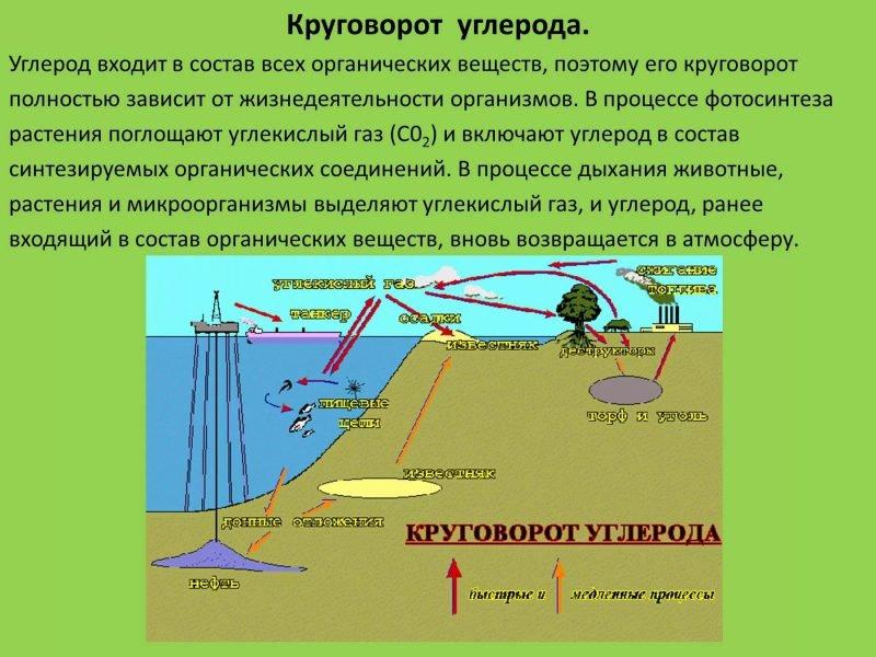 Углерод
