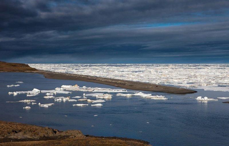 Море Лаптевых льды