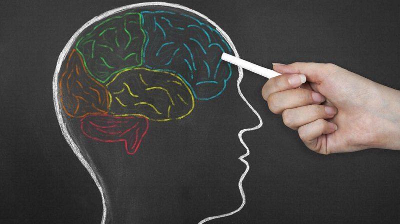 Отключение части мозга – путь к гениальности