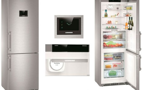 Типичные неисправности холодильников Liebherr и способы их устранения
