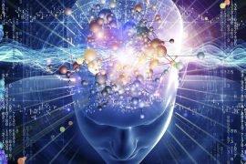 Что такое разум человека – определение