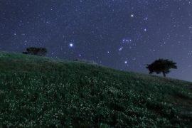 Арктур – самая яркая звезда в Северном полушарии