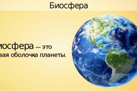 Что такое Биосфера?