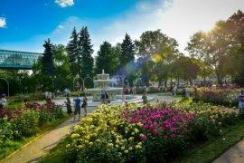 Самые красивые парки Москвы – ТОП-5 с ФОТО и описание