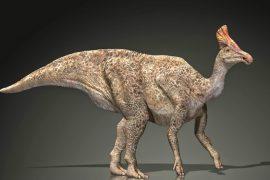 Животные доисторического времени, существовавшие на российской территории
