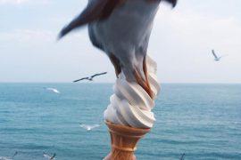 Чайка напала на девушку с мороженым
