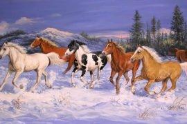 Самая дорогая лошадь в мире – ТОП-3 с ФОТО