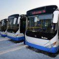 История создания и интересные факты об автобусах