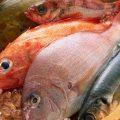 Самая вкусная рыба в мире