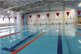 Справки в бассейн должны выдаваться бесплатно