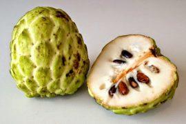 Какой фрукт самый сладкий в мире – ТОП-8 с ФОТО