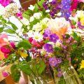 Советы и уроки флориста – как выбрать свежие цветы