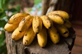 Сколько калорий в банане разных сортов