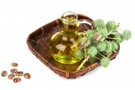 Касторовое масло – уникальное средство с полезными свойствами