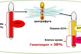 Что такое гематокрит и почему он повышается?
