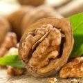 Грецкие орехи – пищевая ценность и польза для здоровья
