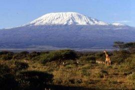 Самая высокая гора в Африке – название и высота