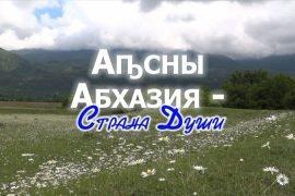Нужен ли загранпаспорт в Абхазию: отправляемся в путь