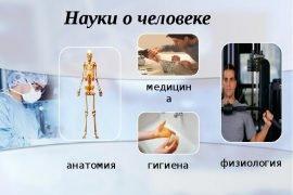 Что изучает физиология человека. Определение – что такое физиология
