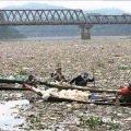 Самая грязная река в мире – интересные факты о Цитарум