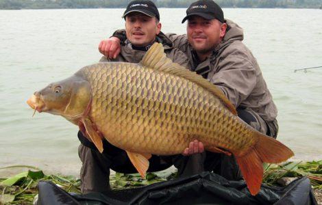 ТОП-10 – самые большие рыбы в мире