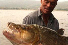 Самые опасные рыбы в мире – ТОП-6 ужасных рыб