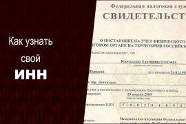 Как узнать свой ИНН онлайн по паспорту