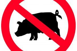 Почему мусульмане не едят свинину, в чем запрет?