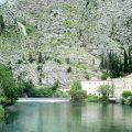 Самая короткая река в мире