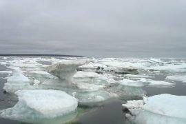 Самое холодное море в России