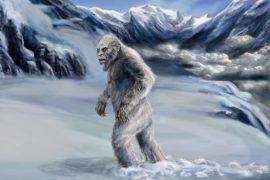 Есть ли доказательства того, что снежный человек существует?