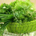 Овощная зелень – кладовая здоровья
