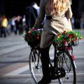Как выбрать женский велосипед – на что обратить внимание?